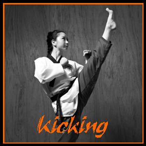 06 - Kicking