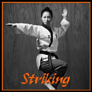 08 - Striking